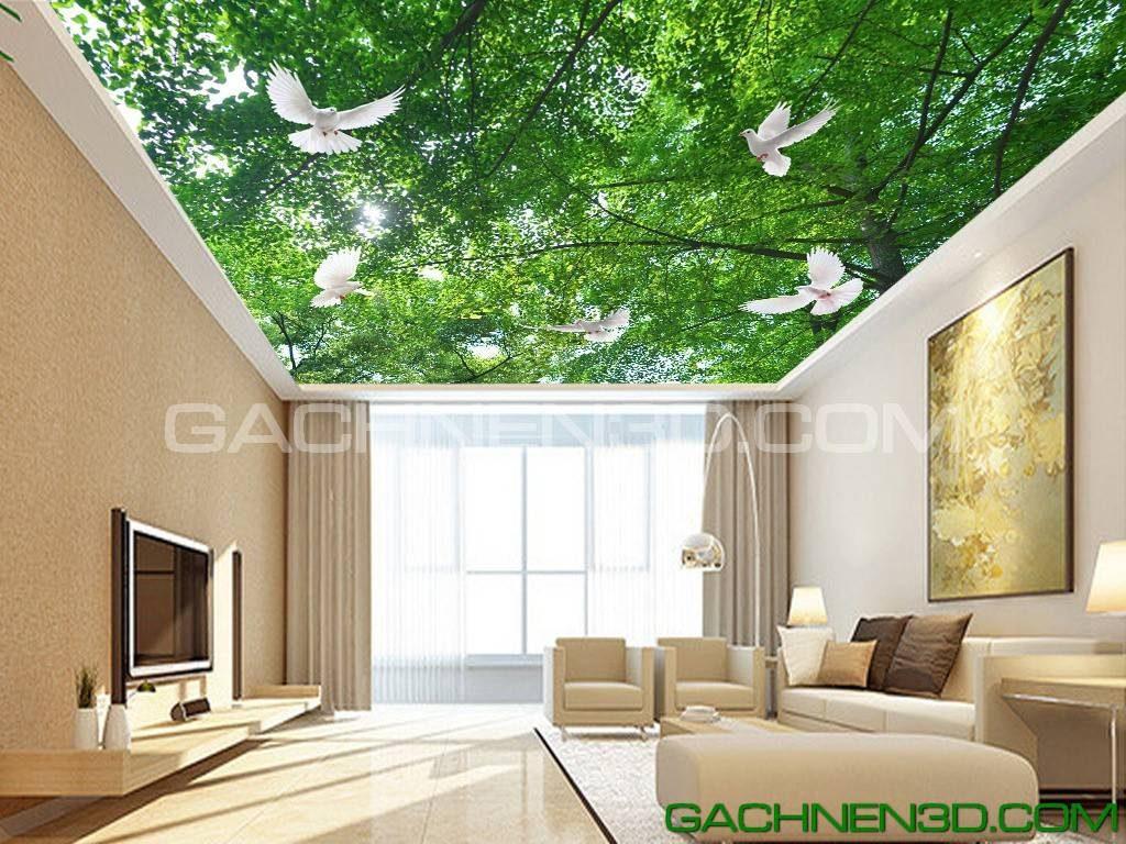 Trần sáng 3D phong cách mới là một biến tấu độc  đáo trong trang trí nội thất khi thi công trần nhà.